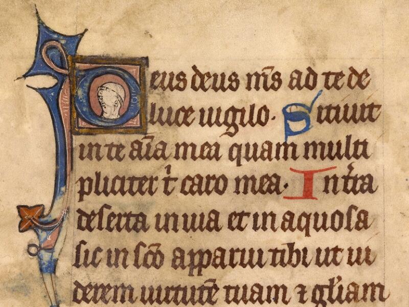 Abbeville, Bibl. mun., ms. 0003, f. 029v - vue 2