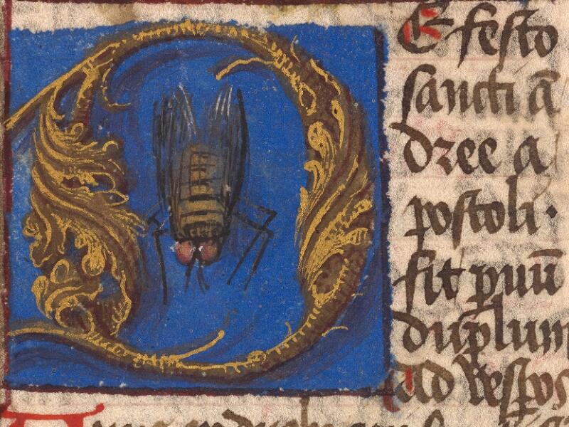 Abbeville, Bibl. mun., ms. 0010, B f. 091v - vue 3