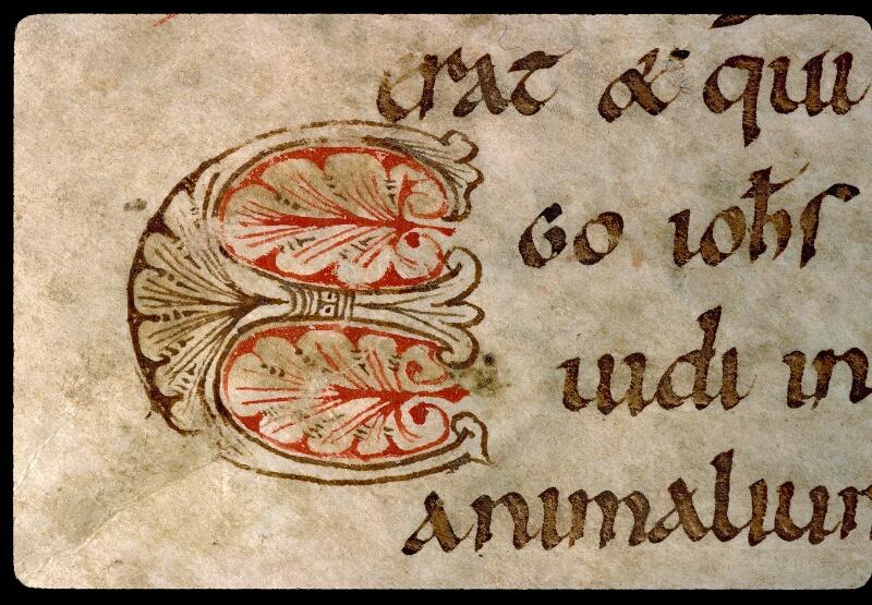 Angers, Bibl. mun., ms. 0103, f. 023v