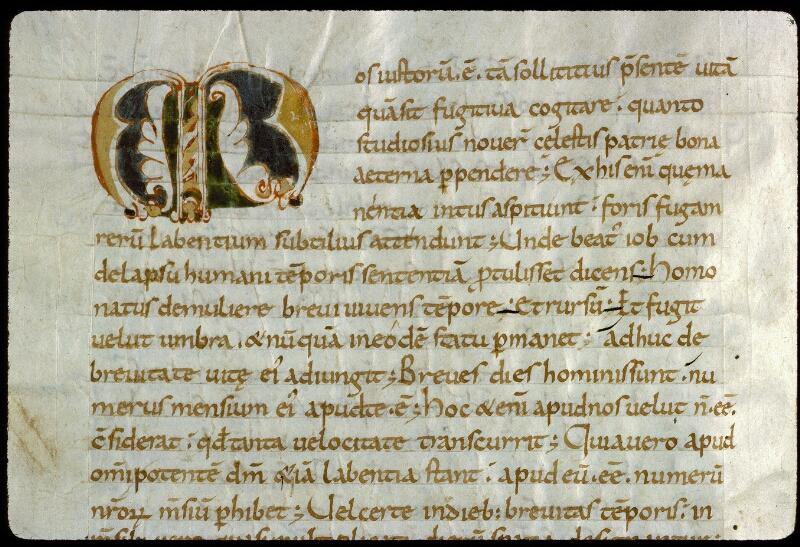 Angers, Bibl. mun., ms. 0185, f. 021v