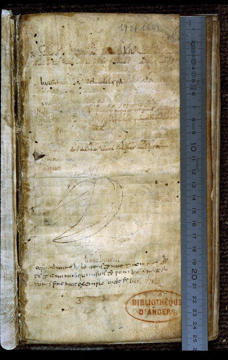 Angers, Bibl. mun., ms. 0192, f. 001 - vue 1
