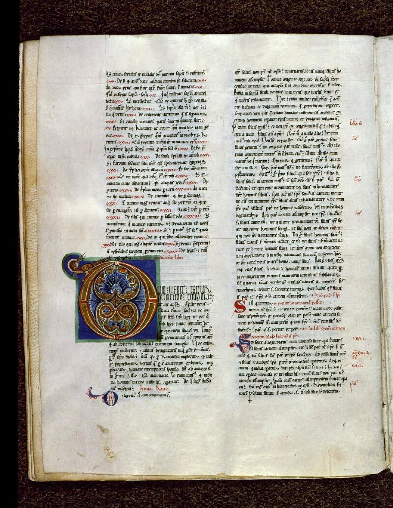 Angers, Bibl. mun., ms. 0199, f. 073v - vue 1