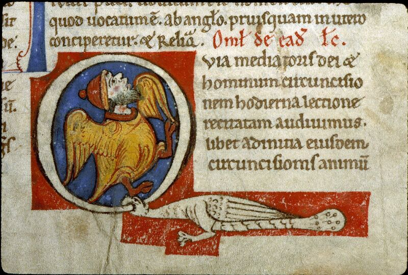Angers, Bibl. mun., ms. 0243, f. 015 - vue 2