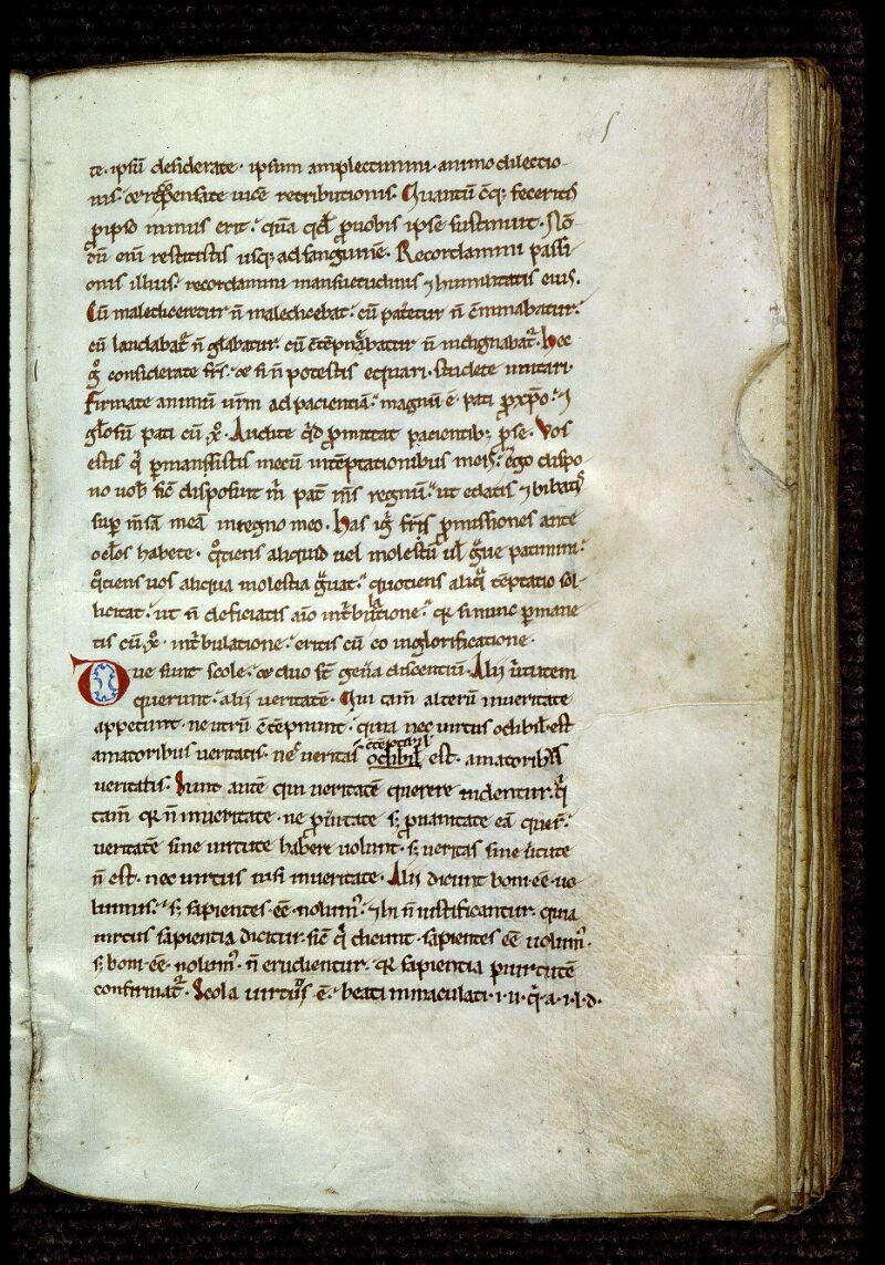 Angers, Bibl. mun., ms. 0299, f. 005 - vue 2