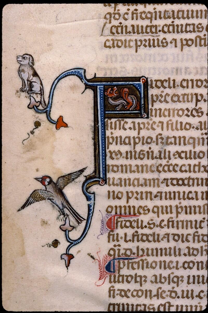 Angers, Bibl. mun., ms. 0385, f. 002v - vue 4