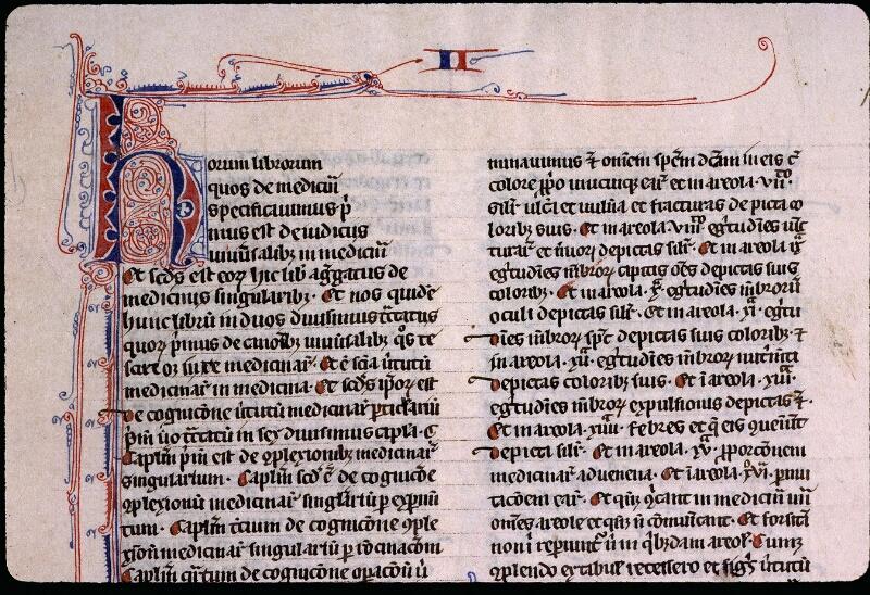Angers, Bibl. mun., ms. 0458, f. 113