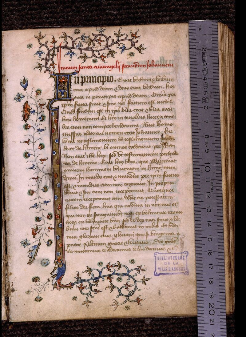 Angers, Bibl. mun., ms. 1238, f. 001 - vue 1