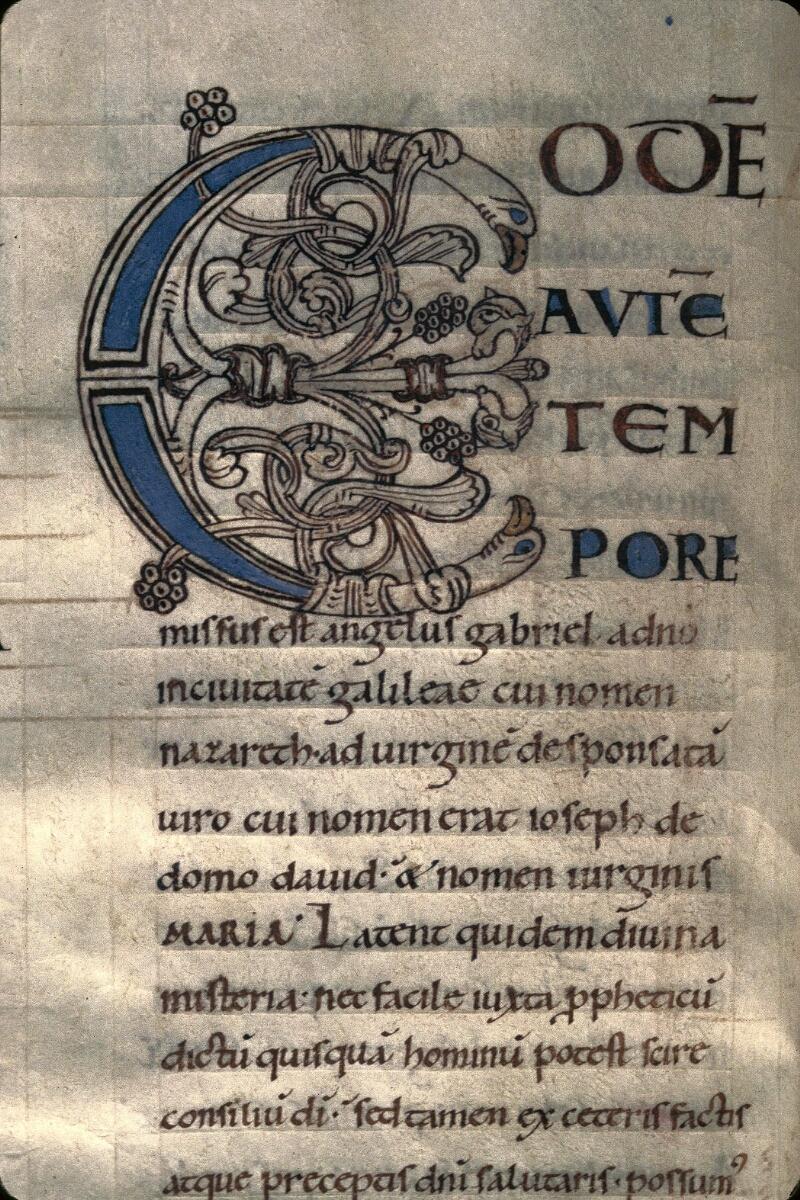 Avranches, Bibl. mun., ms. 0059, f. 013v