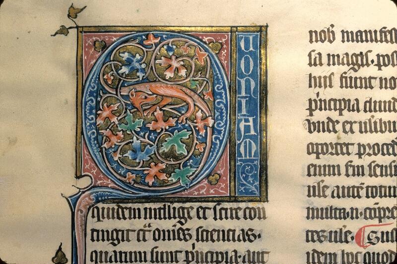 Avranches, Bibl. mun., ms. 0231, f. 129 - vue 2