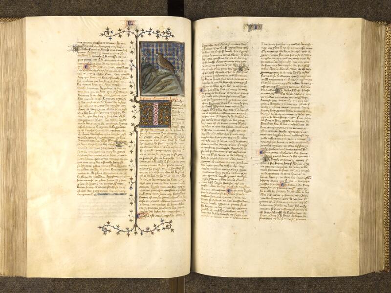 f. 153v - 154, f. 153v - 154