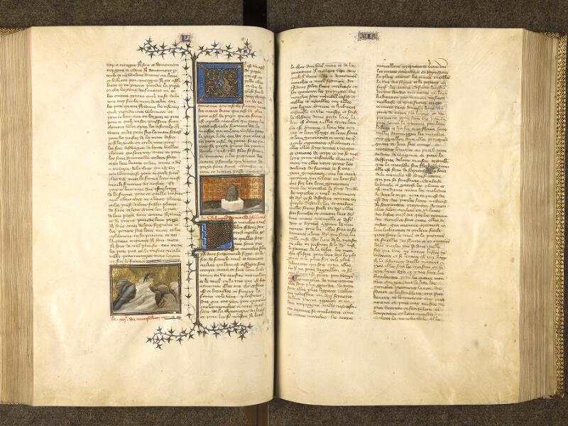 f. 155v - 156, f. 155v - 156