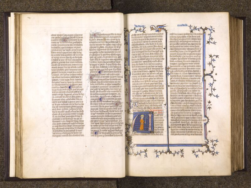 f. 023v - 024, f. 023v - 024