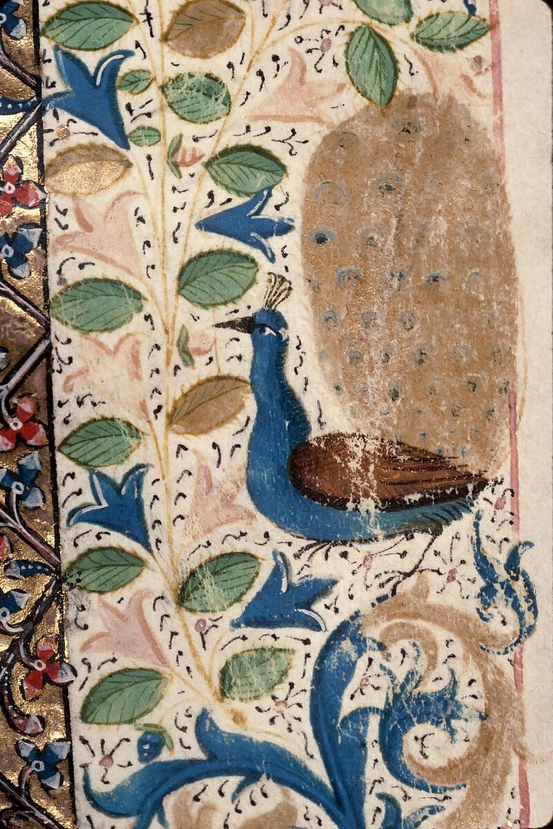 Evreux, Bibl. mun., ms. lat. 098, f. 066 - vue 11