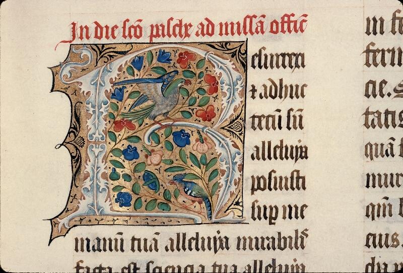 Evreux, Bibl. mun., ms. lat. 098, f. 081