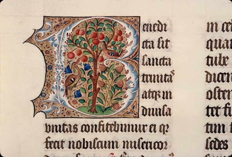 Evreux, Bibl. mun., ms. lat. 098, f. 100