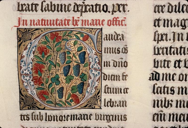 Evreux, Bibl. mun., ms. lat. 098, f. 164v - vue 2