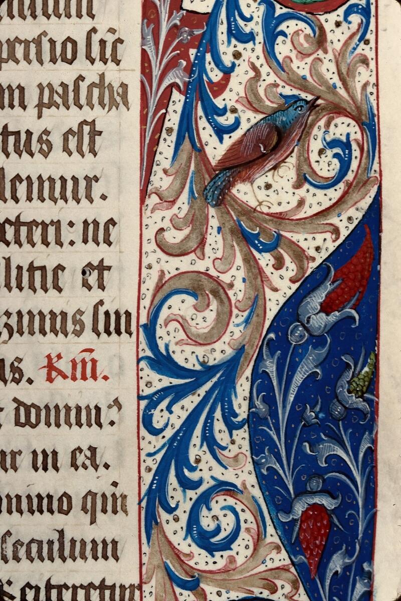Evreux, Bibl. mun., ms. lat. 099, f. 007 - vue 5