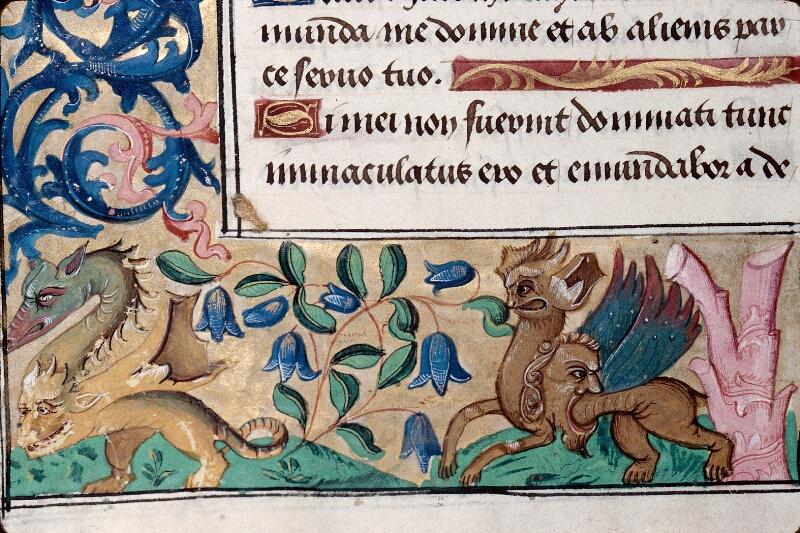 Abbeville, Bibl. mun., ms. 0016, f. 008v - vue 3