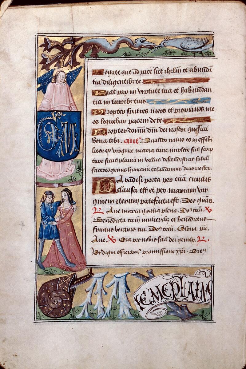 Abbeville, Bibl. mun., ms. 0016, f. 019v - vue 1