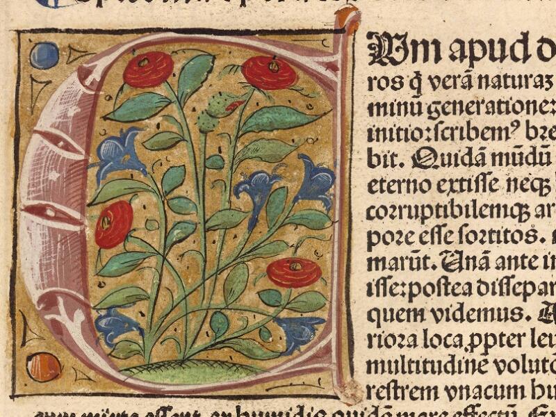 Abbeville, Bibl. mun., inc. 003, f. 001 - vue 2