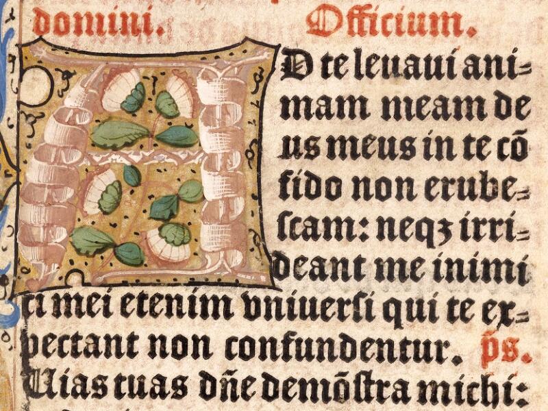 Abbeville, Bibl. mun., inc. 046, A f. 001 - vue 3