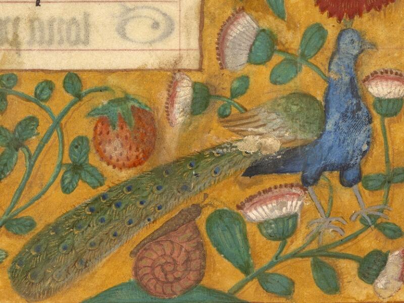 Abbeville, Bibl. mun., ms. 0015, f. 073 - vue 2