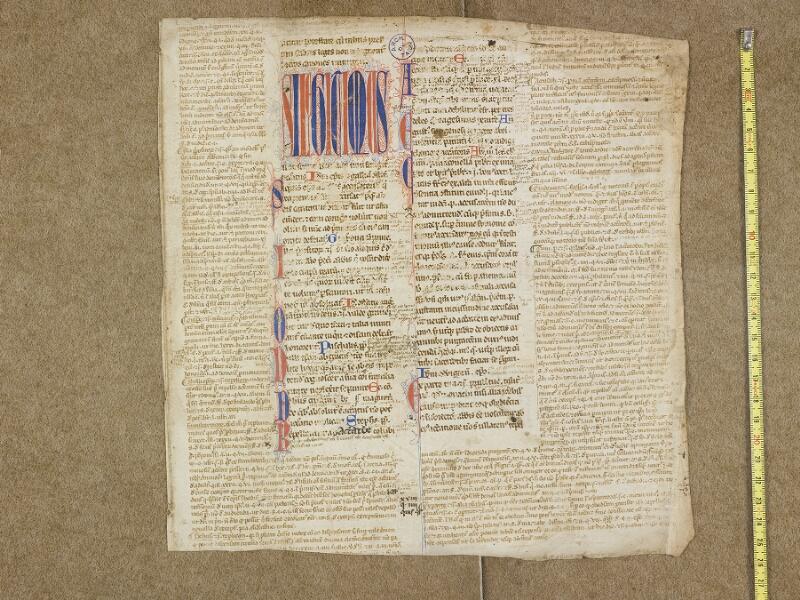 ALBI, Archives départementales du Tarn, J(023) 082, document 2 vue 1 avec réglet