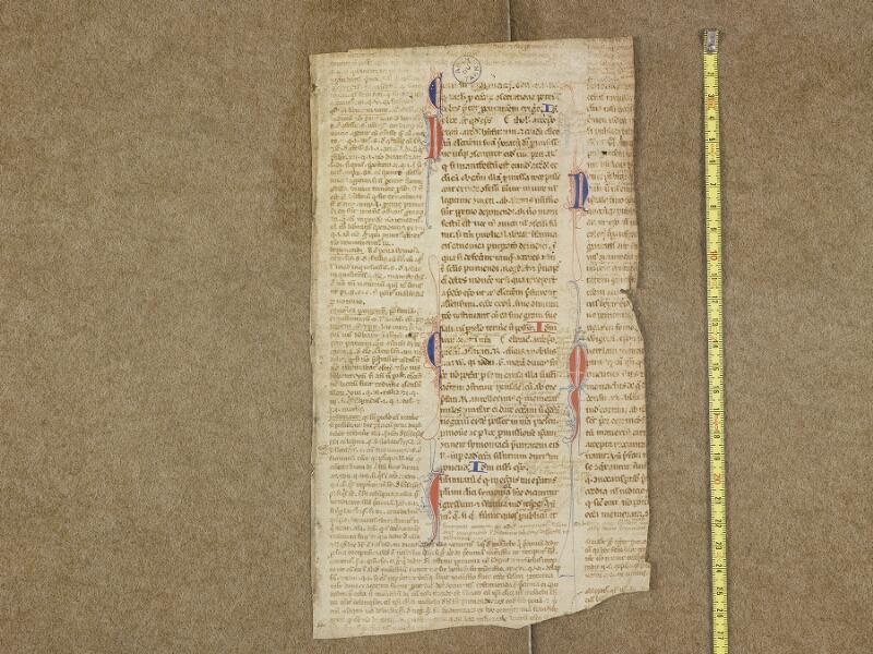 ALBI, Archives départementales du Tarn, J(023) 082, document 3 vue 1 avec réglet