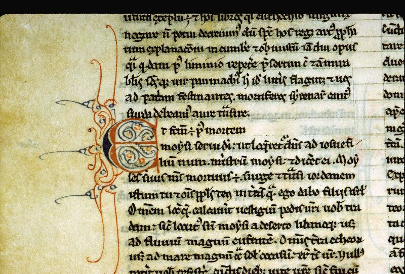 Angers, Bibl. mun., ms. 0008, f. 064v