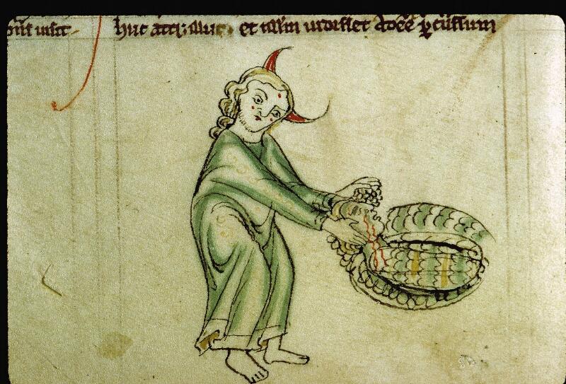 Angers, Bibl. mun., ms. 0009, f. 012v - vue 2