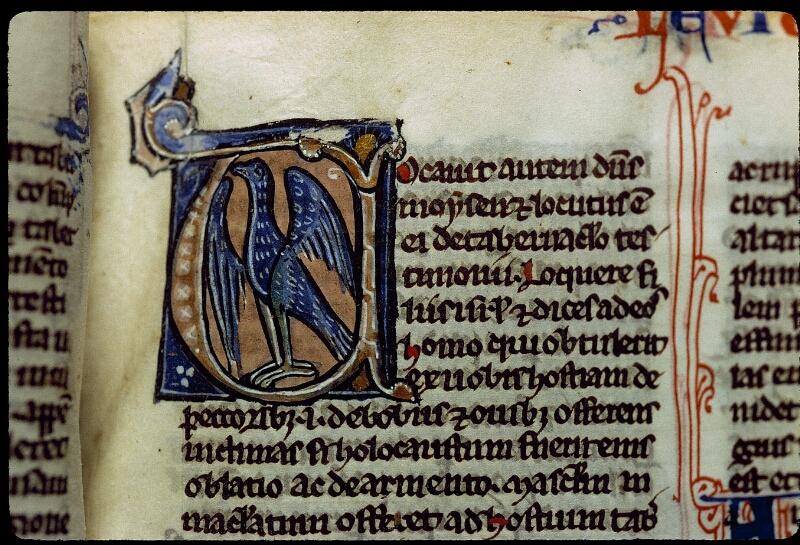 Angers, Bibl. mun., ms. 0011, f. 045 - vue 2