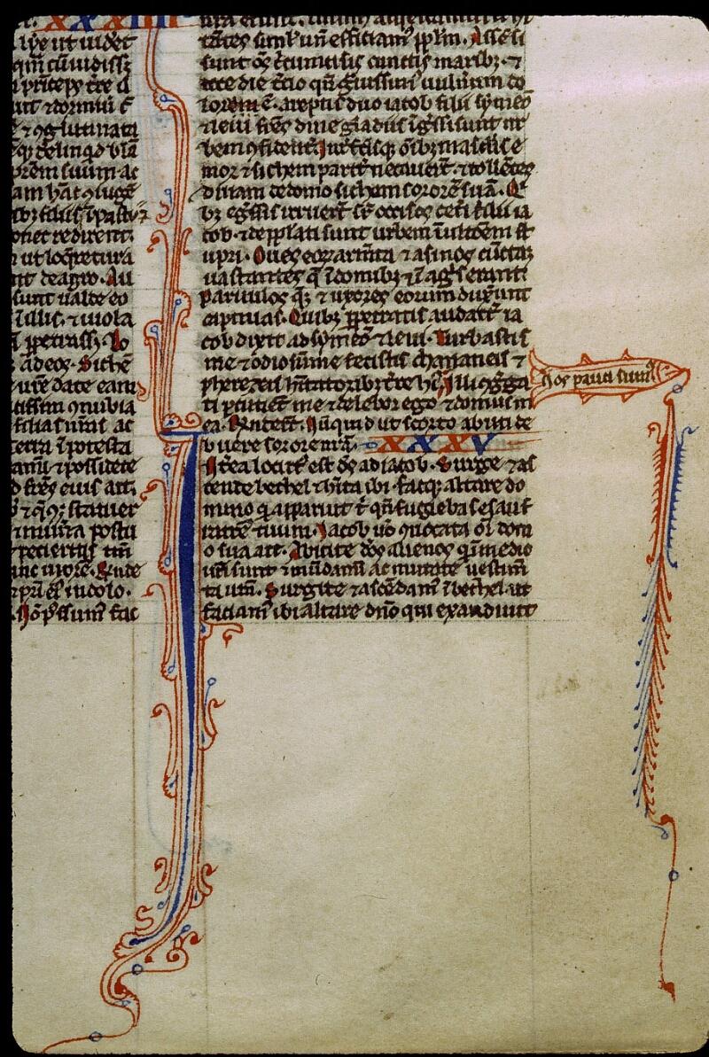 Angers, Bibl. mun., ms. 0012, f. 014 - vue 2