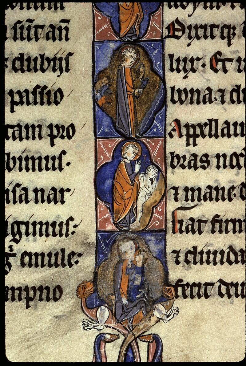 Angers, Bibl. mun., ms. 0016, f. 005v - vue 5