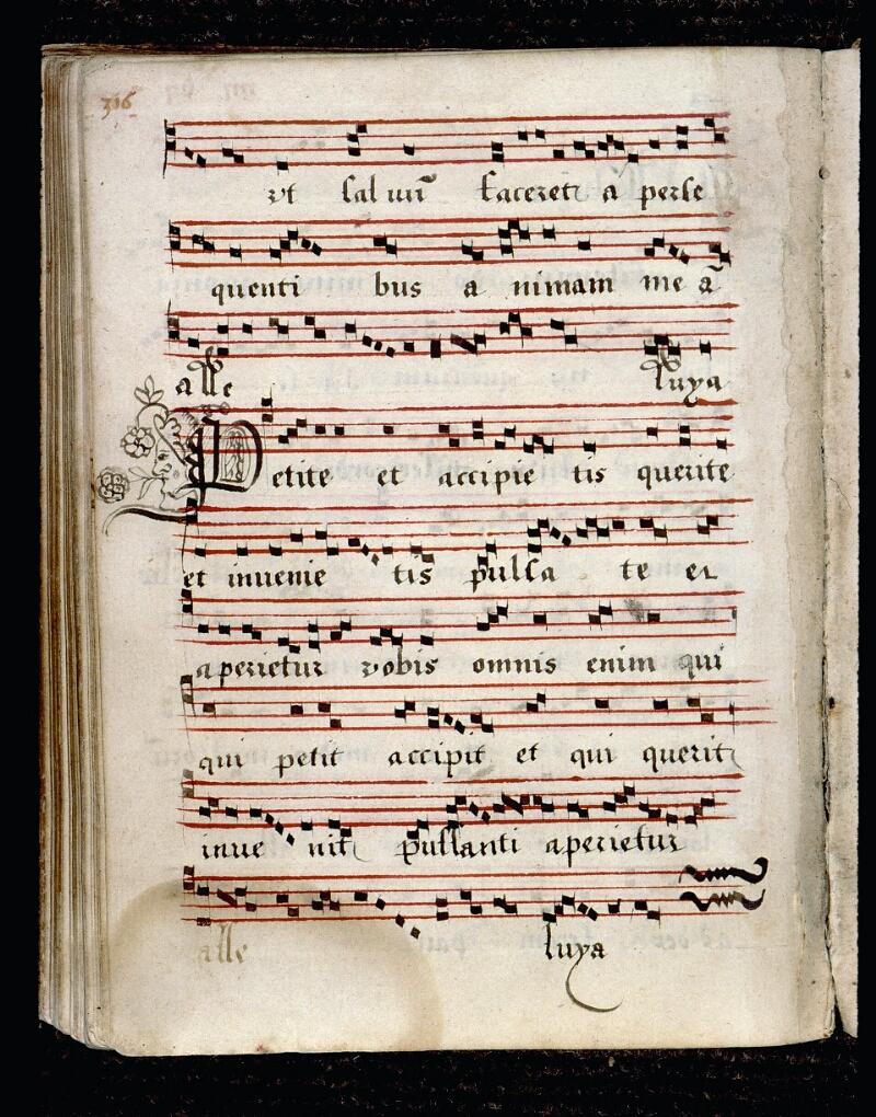 Angers, Bibl. mun., ms. 0081, p. 316