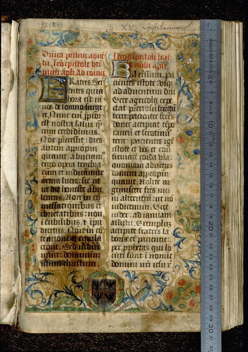Angers, Bibl. mun., ms. 0095, f. 001 - vue 1