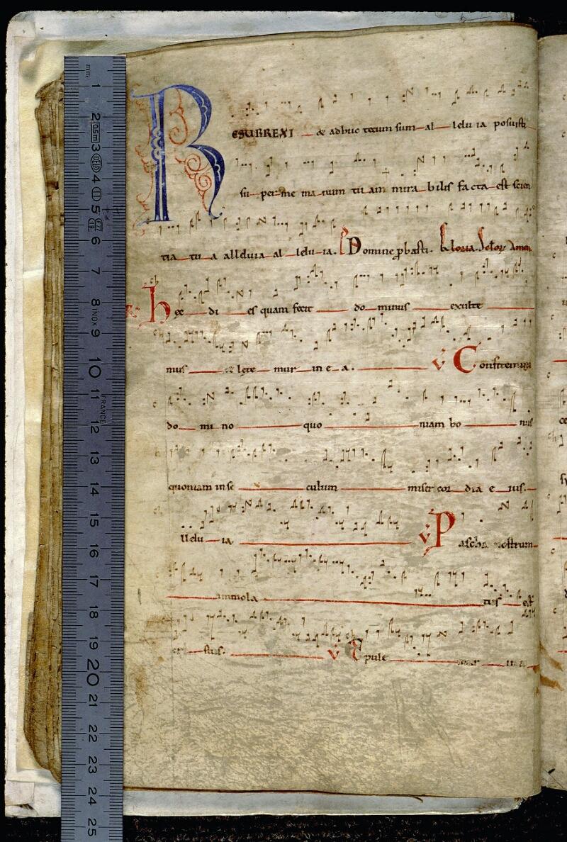 Angers, Bibl. mun., ms. 0097, f. 015v - vue 1