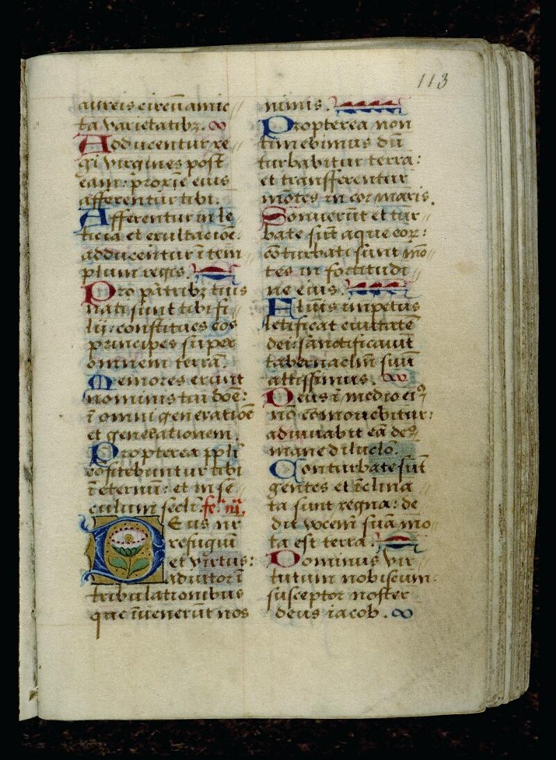 Angers, Bibl. mun., ms. 0116, f. 113