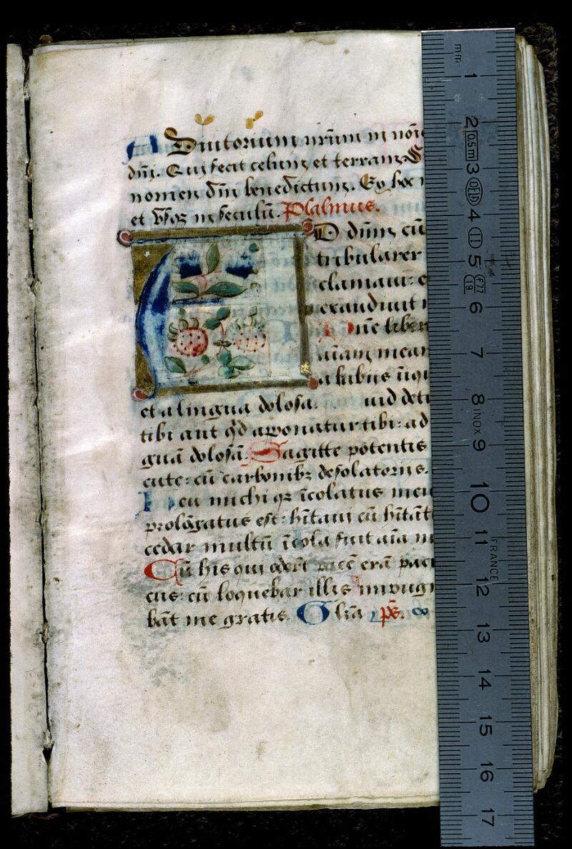 Angers, Bibl. mun., ms. 0137, f. 013 - vue 1