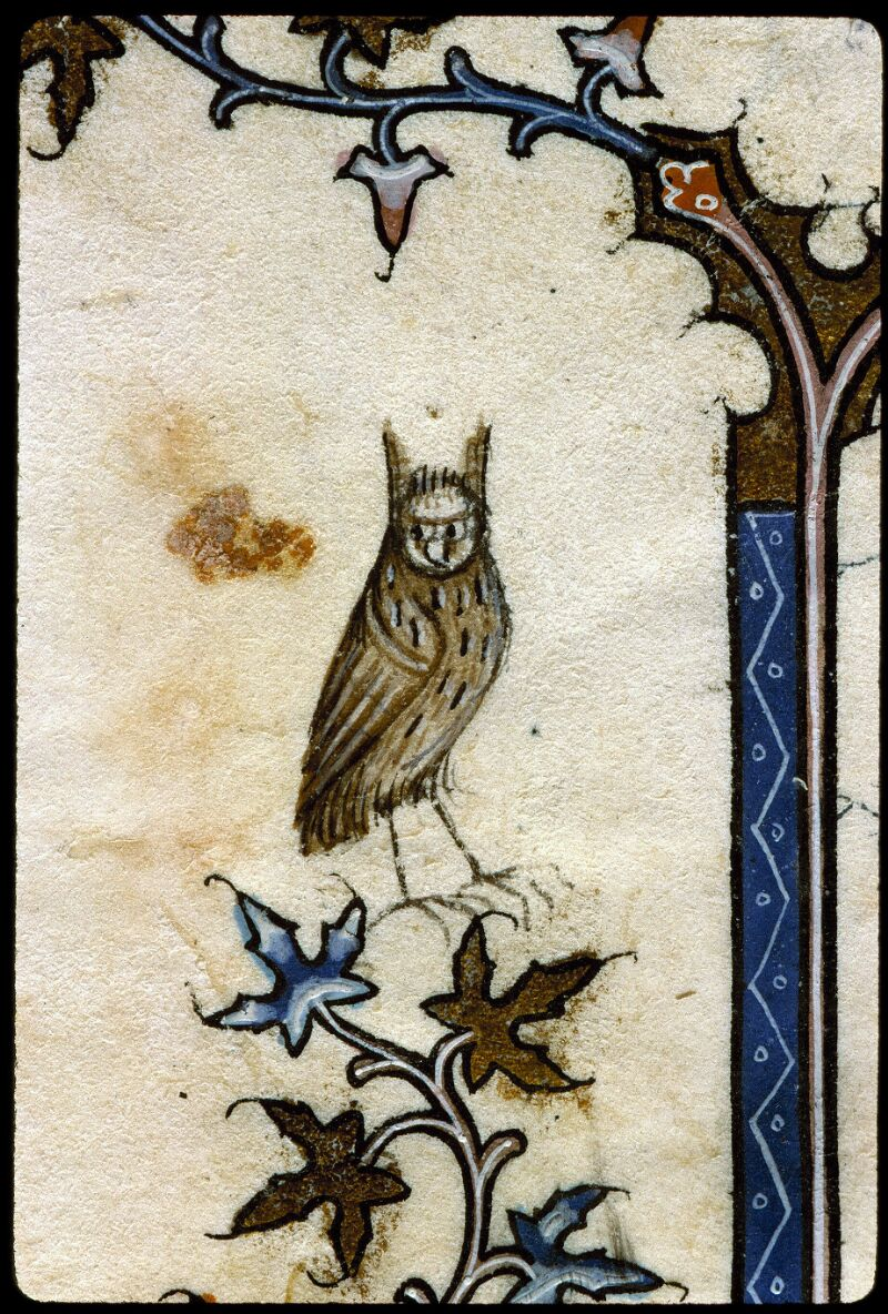 Angers, Bibl. mun., ms. 0162, f. 061v - vue 3