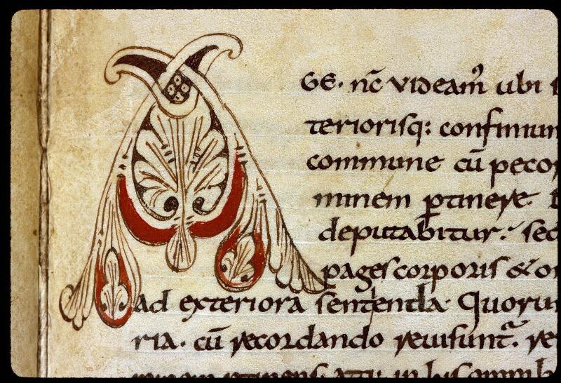 Angers, Bibl. mun., ms. 0164, f. 091 - vue 2