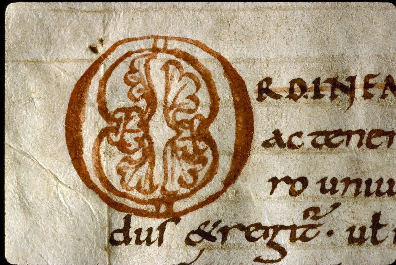 Angers, Bibl. mun., ms. 0166, f. 001v - vue 3