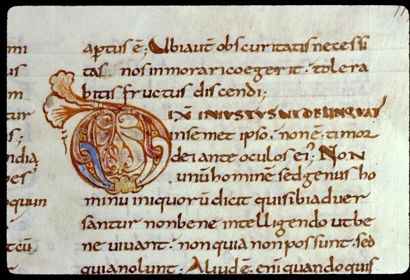 Angers, Bibl. mun., ms. 0169, f. 115