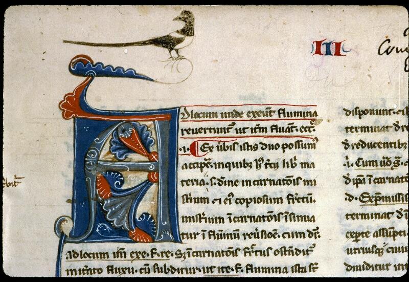 Angers, Bibl. mun., ms. 0206, f. 001 - vue 3