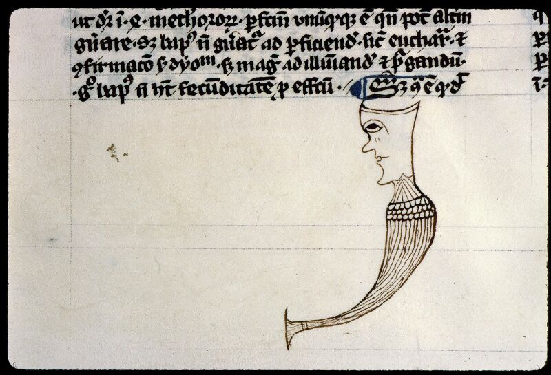Angers, Bibl. mun., ms. 0208, f. 020 - vue 3