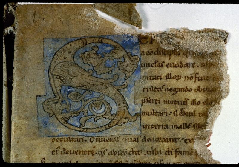 Angers, Bibl. mun., ms. 0213, f. 001 - vue 3