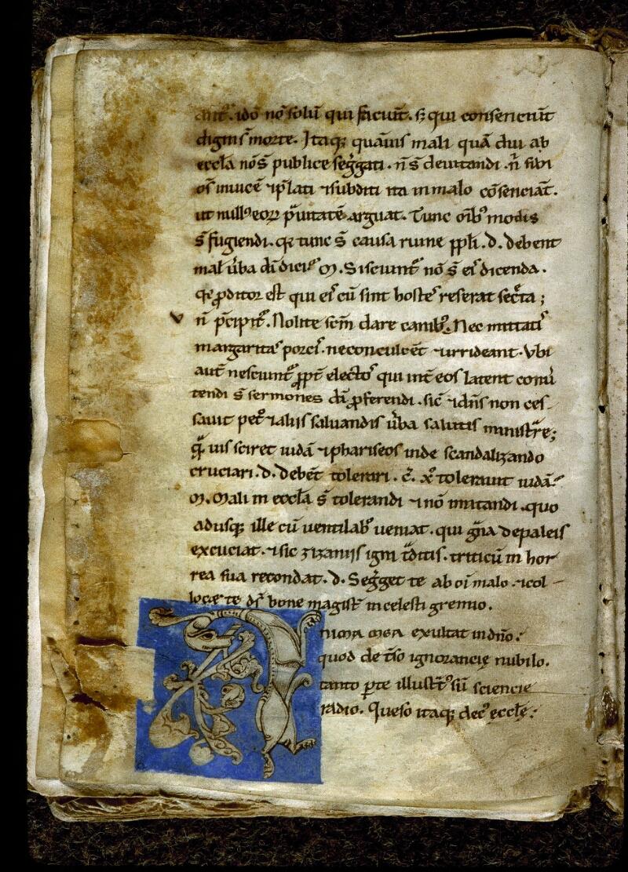Angers, Bibl. mun., ms. 0213, f. 021v - vue 1