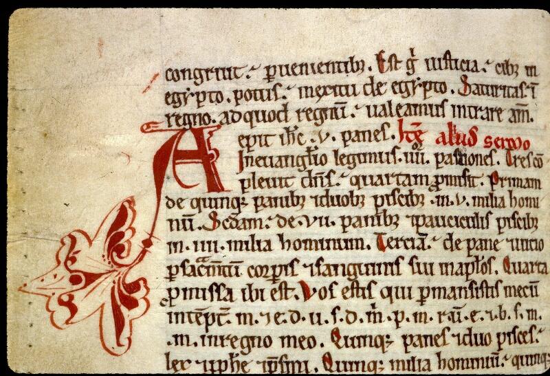 Angers, Bibl. mun., ms. 0241, f. 199v