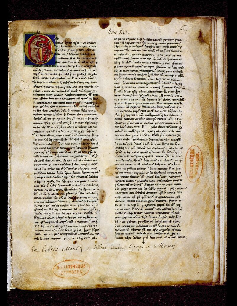 Angers, Bibl. mun., ms. 0242, f. 001 - vue 2