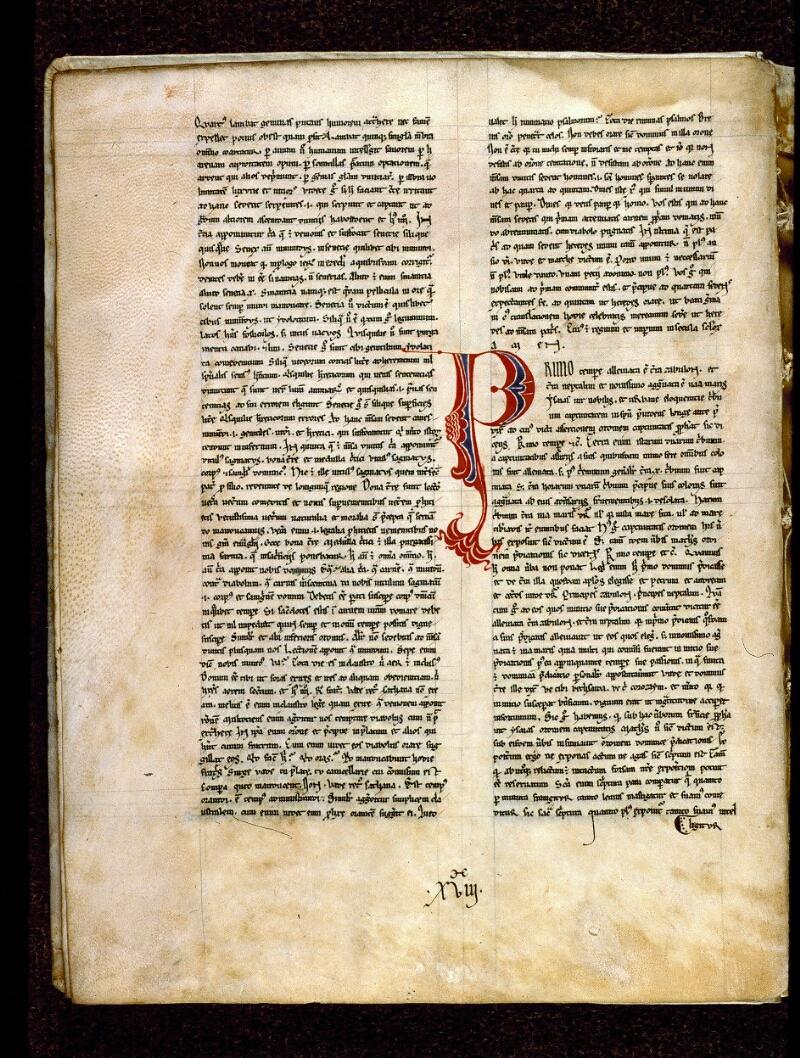 Angers, Bibl. mun., ms. 0242, f. 008v