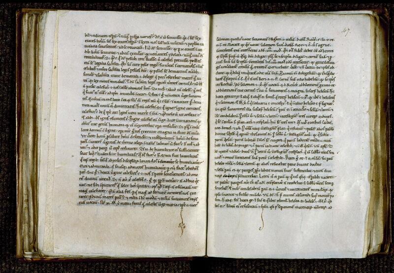 Angers, Bibl. mun., ms. 0247, f. 046v-047